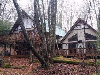 5 Bedroom Creekside Mountain Escape SLEEPS 14 - Beech Mountain vacation rentals