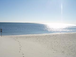 Private Beach on Nantucket Sound - Walk to Beach - Hyannis vacation rentals