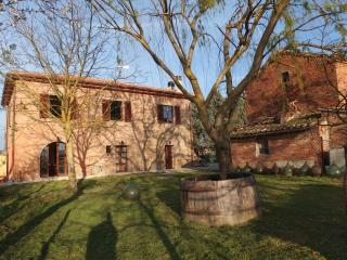 Podere Alberello, Casa Vacanze, Casa Mimosa - Torrita di Siena vacation rentals