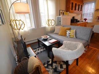 Best priced 2 beds in the Heart of Boston (m4) - Boston vacation rentals