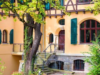Luxus Villa EMG Leipzig Ferienhaus - Leipzig vacation rentals