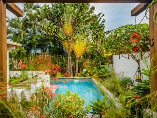 Villa charmante avec piscine chauffée privée - Le Tampon vacation rentals