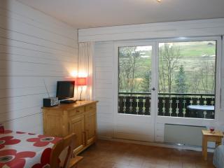 Portes du Soleil apartment studio le Triolet #19 - La Chapelle-D'Abondance vacation rentals