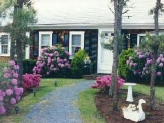 4332 Alcott - Image 1 - Chatham - rentals