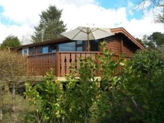 2 bedroom Cabin with Microwave in Trawsfynydd - Trawsfynydd vacation rentals