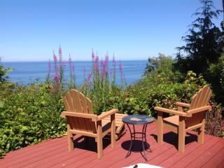 Gorgeous 3 bedroom House in Port Angeles with Internet Access - Port Angeles vacation rentals