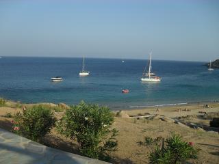 Beautiful 3 bedroom Villa in Livadi - Livadi vacation rentals