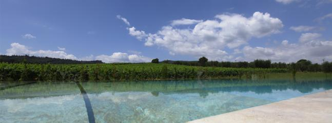 the pool - travertino - Sarteano - rentals