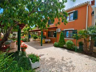 Grape 2+2+2, BIZJAK apartments VINKURAN - Vinkuran vacation rentals
