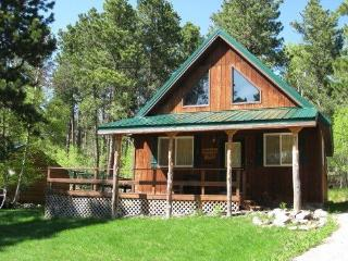 Cozy House with Deck and Grill - Lead vacation rentals
