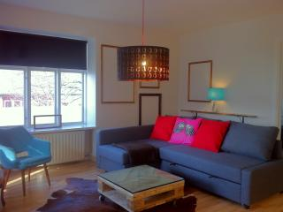 The Warm & Bright Downtown Apartment - Reykjavik vacation rentals
