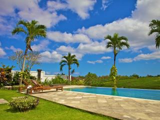 Canggu 2 Bedroom Junno Villa with Ricefield View - Canggu vacation rentals