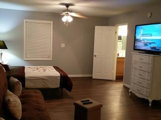 1 bedroom Condo with Internet Access in Indianapolis - Indianapolis vacation rentals