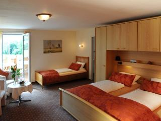 Guest Room in Winden im Elztal - Hörnleberg (# 9640) - Winden im Elztal vacation rentals