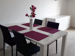 Family studio apartment, sea view, WIFI, parking - Mlini vacation rentals