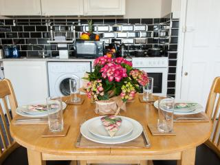 Luxury Apartment with AC and Wifi - London vacation rentals
