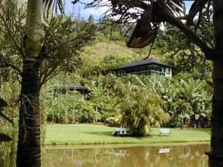 Romantic Wainiha vacation House with Television - Wainiha vacation rentals