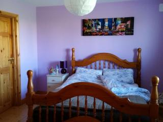 1 bedroom House with Central Heating in Corofin - Corofin vacation rentals