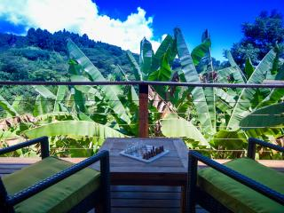 Tropical Hill side slice of heaven - Papeete vacation rentals