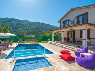 Villa Efe, luxury villa with secluded pool - Kayakoy vacation rentals