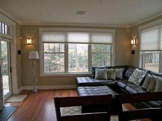 South Peak 1D - Professionally Managed by Loon Reservation Service - Lincoln vacation rentals