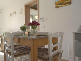 LE COLOMBE APARTMENT - Lucca vacation rentals