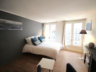 Schindler Rentals - NIGHTSHADE - Lille vacation rentals