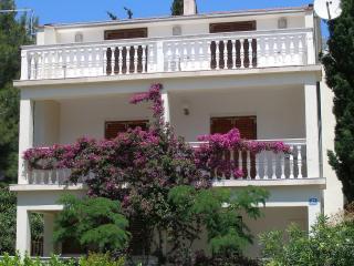 Villa 250m from Beach, Orebic near Korcula - Orebic vacation rentals