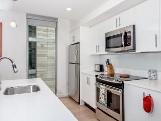 3BR Fully Furnished Apt Washington Center of City - Washington DC vacation rentals