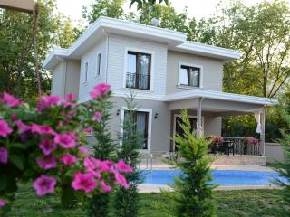 Vacation rentals in Sakarya Province
