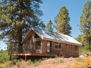 Mountain Escape Cabin #2 - La Sal vacation rentals