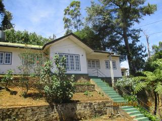 Romantic 1 bedroom House in Nuwara Eliya - Nuwara Eliya vacation rentals