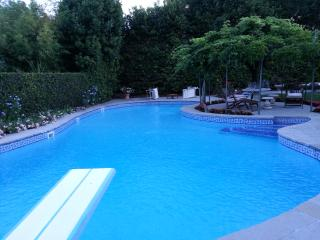 Appartamento in villa con piscina - Lastra a Signa vacation rentals