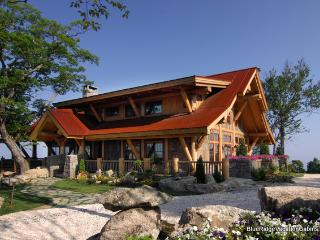 Amazing Views*Luxury Mountaintop at Eagles Nest - Banner Elk vacation rentals