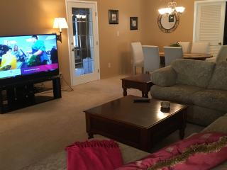 Beautiful House with Internet Access and A/C - Sun Lakes vacation rentals