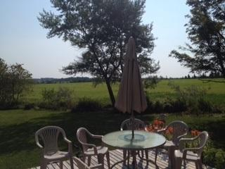 Beautiful Country Home Walking Distance to Water - Belfast vacation rentals
