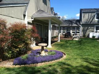 Spacious One-bedroom Suite with Full Kitchen - Yorktown vacation rentals