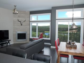 Breathtaking Mountain View Right from Living Room! - Sainte-Emelie-de-L'Energie vacation rentals