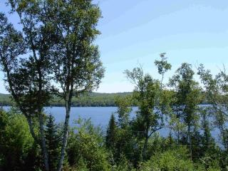 Embden Lake, Cottages on the Hill - North New Portland vacation rentals