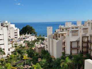Beach front Penthouse with private swimming pool - Estepona vacation rentals