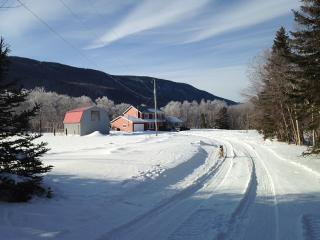 Private Acreage in the Beautiful Humber Valley - Steady Brook vacation rentals