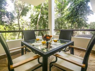 Experience TAO - Rejuvenate in the Mayan Sun - Yoga - Golf - Akumal vacation rentals