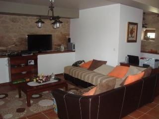 Cozy Condo with Internet Access and Television - Sabugal vacation rentals