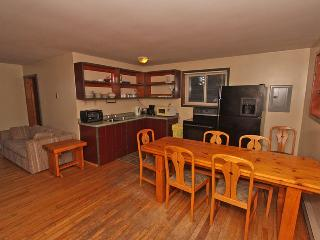 Nice Cottage with Kettle and Stove - Point Au Baril vacation rentals