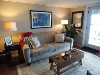 Waterfront Beach Apartment 15 Min From Seattle - Seattle vacation rentals
