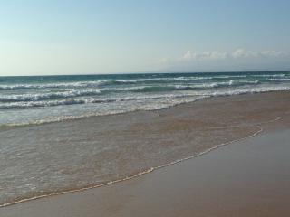 Beach, nature, sea and wild Caparica - Costa da Caparica vacation rentals