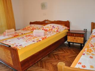 TH03117 Apartments Vlado / Two Bedrooms A8 - Lopar vacation rentals