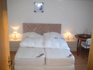7 bedroom House with Internet Access in Winterberg - Winterberg vacation rentals