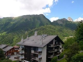 Beautiful 1 bedroom Condo in Ovronnaz with Short Breaks Allowed - Ovronnaz vacation rentals