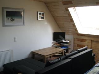 Vacation Apartment in Wunstorf - 538 sqft, renovated, bright, friendly (# 9209) - Steinhude vacation rentals